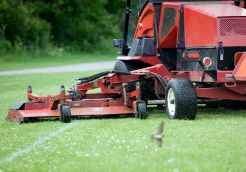 Professional Ground Maintenance